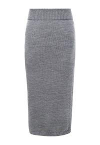 Max Mara Leisure Spódnica ołówkowa 33060196 Szary Slim Fit. Kolor: szary