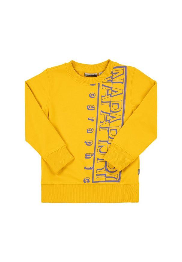 Żółta bluza Napapijri