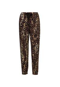 Deha - Spodnie DEHA HYPE. Materiał: włókno, bawełna. Wzór: motyw zwierzęcy, aplikacja, nadruk