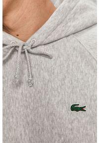Szara bluza nierozpinana Lacoste raglanowy rękaw, z aplikacjami