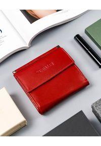 4U CAVALDI - Kwadratowy portfel damski czerwony Cavaldi RD-16-GCL-6269 RED. Kolor: czerwony. Materiał: skóra