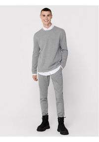 Only & Sons - ONLY & SONS Sweter Panter 22016980 Szary Regular Fit. Kolor: szary. Wzór: motyw zwierzęcy #6