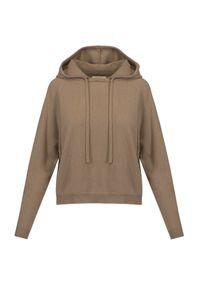 Allude - Sweter wełniany ALLUDE. Typ kołnierza: kaptur. Materiał: wełna. Długość rękawa: raglanowy rękaw. Styl: sportowy