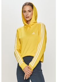 Adidas - adidas - Bluza. Okazja: na co dzień. Kolor: żółty. Długość rękawa: długi rękaw. Długość: długie. Styl: casual