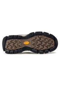 Brązowe buty trekkingowe The North Face trekkingowe