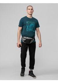 4f - Spodnie trekkingowe męskie. Kolor: czarny. Materiał: tkanina, dzianina