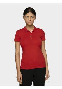 4f - Koszulka polo damska. Okazja: na co dzień. Typ kołnierza: polo. Kolor: czerwony. Materiał: bawełna, jersey, dzianina, materiał. Styl: casual