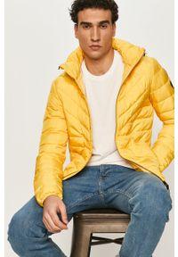 Żółta kurtka Tom Tailor z kapturem, na co dzień, casualowa