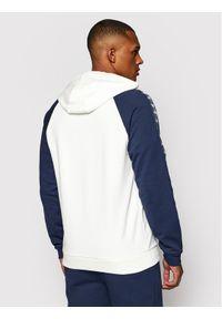 Fila Bluza Hudd Reglan 688558 Biały Regular Fit. Kolor: biały