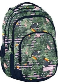 Paso Plecak szkolny zielony (PPMS19-2706). Kolor: zielony