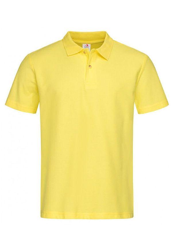 T-shirt Stedman polo, z krótkim rękawem, krótki