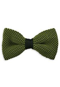 Zielona muszka Alties elegancka