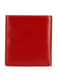 Wittchen - mały skórzany portfel damski. Kolor: czerwony. Materiał: skóra