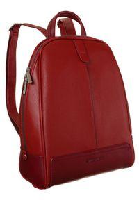 DAVID JONES - Plecak damski czerwony David Jones CM6014 RED. Kolor: czerwony. Materiał: skóra ekologiczna. Styl: klasyczny
