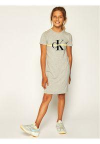 Szara sukienka Calvin Klein Jeans prosta, casualowa, na co dzień
