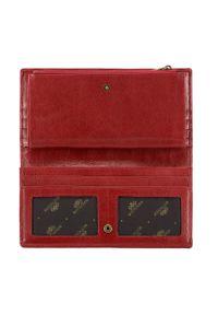 Wittchen - Damski portfel skórzany stylowy na napę. Kolor: czerwony. Materiał: skóra