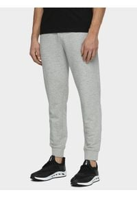 Spodnie dresowe 4f #1