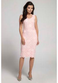 Nommo - Jasnoróżowa Dopasowana Sukienka Koronkowa bez Rękawów. Kolor: różowy. Materiał: koronka. Długość rękawa: bez rękawów