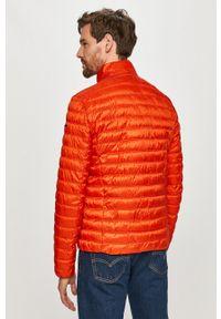 Pomarańczowa kurtka Geox bez kaptura, gładkie, na co dzień