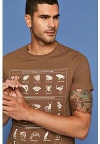 Brązowy t-shirt medicine z okrągłym kołnierzem, z nadrukiem