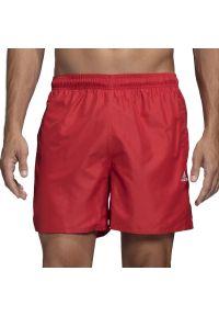 Czerwone spodenki sportowe Adidas krótkie, do pływania