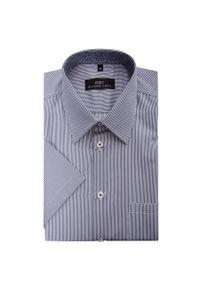 Koszula Giacomo Conti krótka, na lato, w prążki