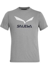 Salewa - SALEWA Koszulka męska Solidlogo Drirelease grey