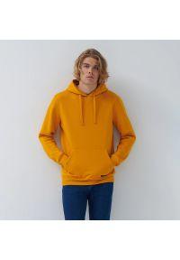 House - Bluza z kapturem basic - Żółty. Typ kołnierza: kaptur. Kolor: żółty
