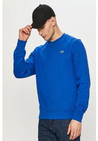 Niebieska bluza nierozpinana Lacoste bez kaptura, z aplikacjami