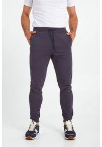 Trussardi Jeans - SPODNIE DRESOWE TRUSSARDI. Okazja: na co dzień. Materiał: dresówka. Wzór: aplikacja, nadruk. Styl: casual