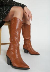 Renee - Camelowe Kozaki Tenet. Wysokość cholewki: przed kolano. Nosek buta: szpiczasty. Zapięcie: zamek. Materiał: jeans, futro. Szerokość cholewki: normalna. Obcas: na obcasie. Wysokość obcasa: średni