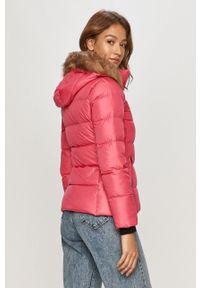 Różowa kurtka Calvin Klein na co dzień, casualowa, z kapturem