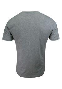 Pako Jeans - T-shirt Popielaty z Guzikami przy Kołnierzyku, Bawełniany, z Nadrukiem, Krótki Rękaw -PAKO JEANS. Okazja: na co dzień. Kolor: szary. Materiał: bawełna. Długość rękawa: krótki rękaw. Długość: krótkie. Wzór: nadruk. Styl: casual