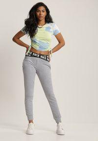 Renee - Szare Spodnie Dresowe Taphixie. Stan: podwyższony. Kolor: szary. Materiał: dresówka. Długość: długie. Wzór: napisy, haft, aplikacja
