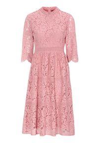 Happy Holly Koronkowa sukienka Madison przydymiony róż female różowy 52. Typ kołnierza: kołnierzyk stójkowy. Kolor: różowy. Materiał: koronka. Wzór: koronka