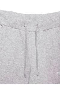 Sprandi Spodnie dresowe SS21-SPM003 Szary Regular Fit. Kolor: szary. Materiał: dresówka