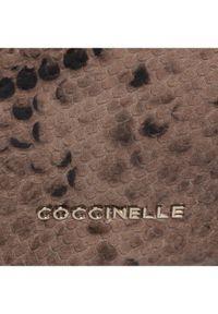 Brązowa listonoszka Coccinelle