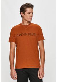 Brązowy t-shirt Calvin Klein z nadrukiem, casualowy, na co dzień