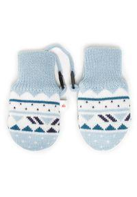 Reima Rękawiczki dziecięce Huomen 517217 Niebieski. Kolor: niebieski