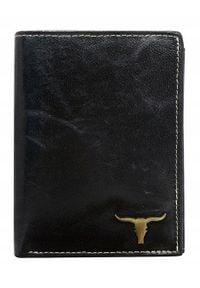 BUFFALO WILD - Portfel męski Buffalo Wild czarny RM-04-BAW. Kolor: czarny. Materiał: skóra