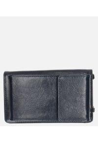 Niebieski portfel Casu