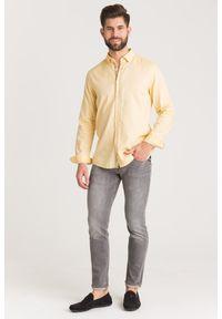 Koszula JOOP! Jeans do pracy, na lato, biznesowa