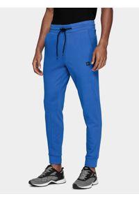 Spodnie dresowe 4f na fitness i siłownię