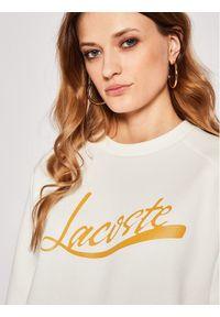 Biała bluza Lacoste