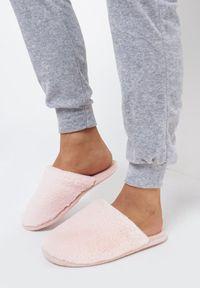 Born2be - Różowe Kapcie Grynania. Nosek buta: okrągły. Kolor: różowy. Materiał: welur, futro, materiał. Szerokość cholewki: normalna. Obcas: na płaskiej podeszwie