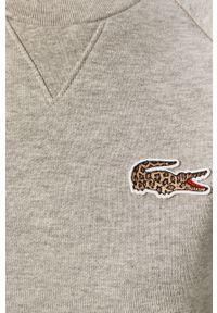 Wielokolorowa bluza Lacoste bez kaptura, długa, z aplikacjami