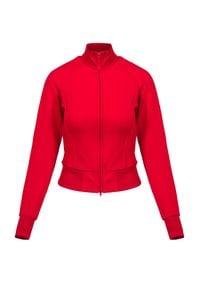 Bluza Y-3 W CL TRK JKT. Typ kołnierza: kołnierzyk stójkowy. Materiał: tkanina, poliamid, prążkowany. Długość rękawa: raglanowy rękaw