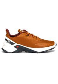 salomon - Buty męskie do biegania Salomon Alphacross L41103500. Materiał: tkanina, guma, materiał, syntetyk. Szerokość cholewki: normalna. Sport: fitness