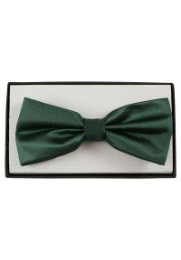 Zielona muszka Alties elegancka, w prążki