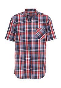 Czerwona koszula Cellbes krótka, z krótkim rękawem